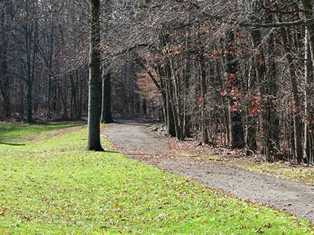 Walking trail
